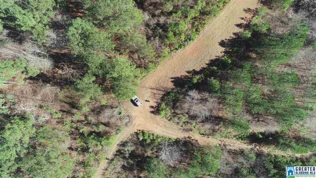 0 Baggett Rd 78+/- Acres, Ashland, AL 36251 (MLS #841444) :: Josh Vernon Group