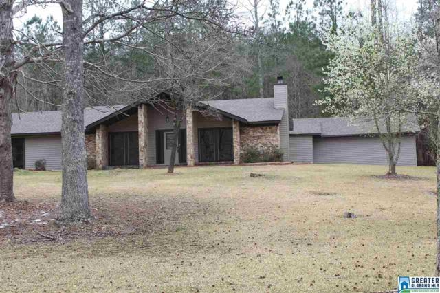 426 Sand Valley Rd, Remlap, AL 35133 (MLS #841497) :: Josh Vernon Group