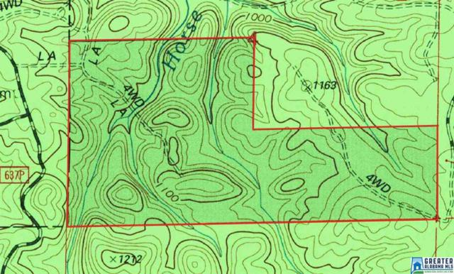 0 Co Rd 637 242+/- Acres, Lineville, AL 36266 (MLS #842098) :: Josh Vernon Group