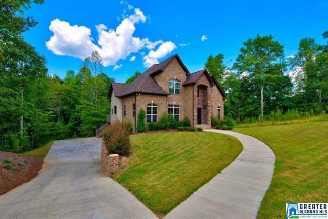 105 Fallow Cir, Chelsea, AL 35043 (MLS #843318) :: Josh Vernon Group