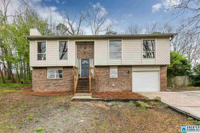 5864 Dug Hollow Rd, Pinson, AL 35126 (MLS #843478) :: Josh Vernon Group