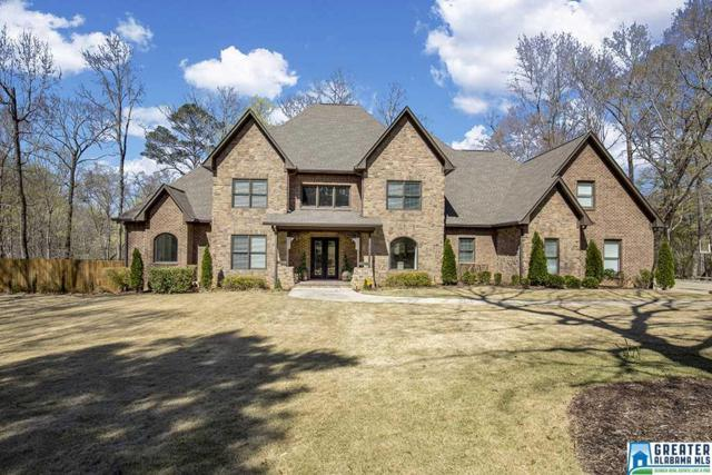600 Indian Trail Rd, Indian Springs Village, AL 35124 (MLS #844640) :: Josh Vernon Group