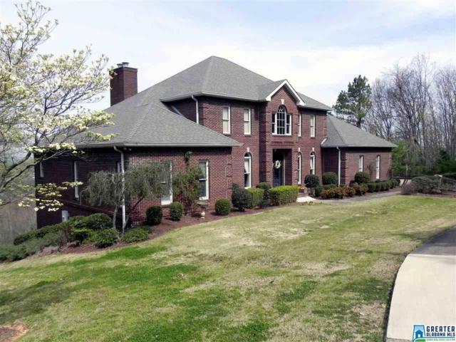 546 Hillyer High Rd, Anniston, AL 36207 (MLS #845124) :: Josh Vernon Group
