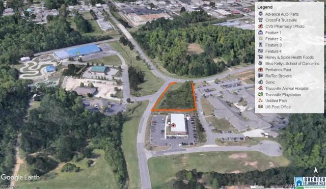 127 Watterson Pkwy, Trussville, AL 35173 (MLS #845154) :: Josh Vernon Group