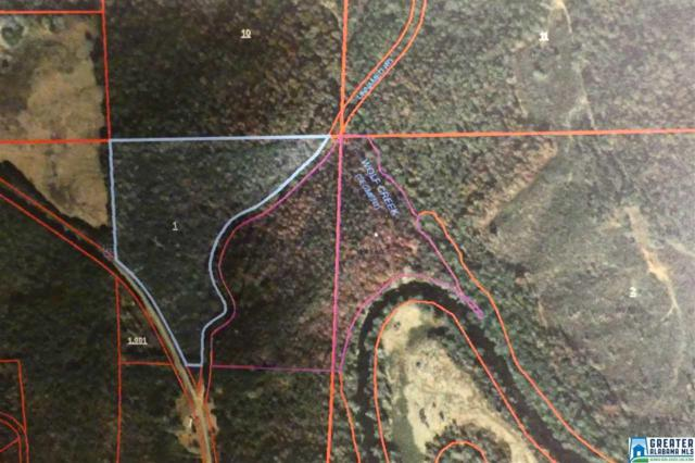 Tract 2 Co Rd 532 Tract 2, Newell, AL 36280 (MLS #845641) :: Josh Vernon Group