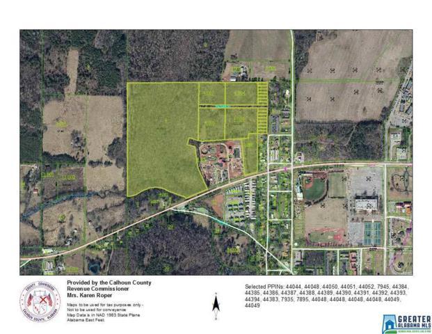 0 Hwy 204 69 Acres, Jacksonville, AL 36265 (MLS #848227) :: Bentley Drozdowicz Group