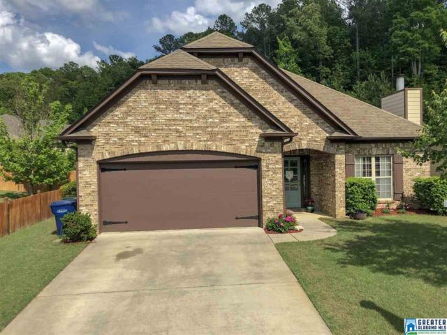 328 Sweet Leaf Dr, Maylene, AL 35114 (MLS #848632) :: Bentley Drozdowicz Group