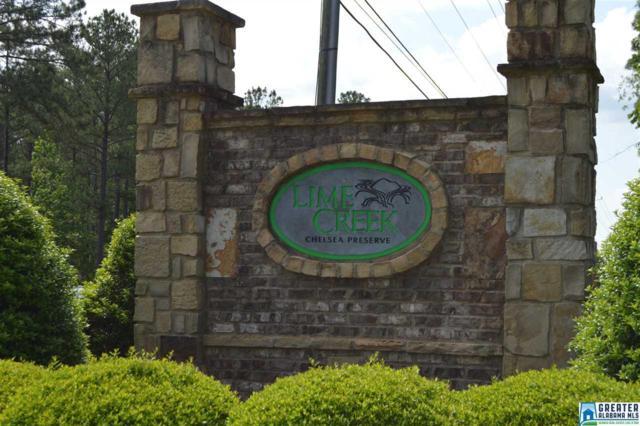 224 Lime Creek Ln, Chelsea, AL 35043 (MLS #848969) :: Bentley Drozdowicz Group