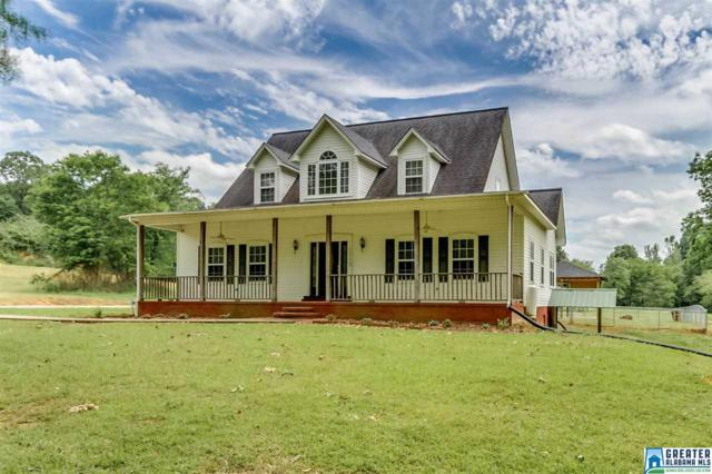 3073 Buttermilk Rd, Cordova, AL 35550 (MLS #849199) :: Bentley Drozdowicz Group