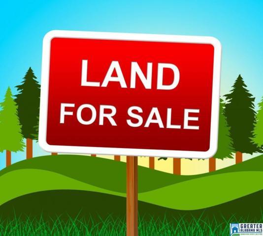 6485 Goodwin Rd None, Pinson, AL 35126 (MLS #849449) :: LocAL Realty