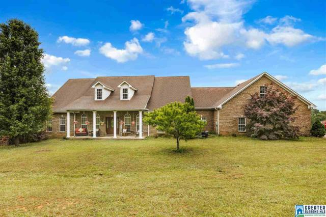 706 Co Rd 22, Ashville, AL 35953 (MLS #849474) :: K|C Realty Team