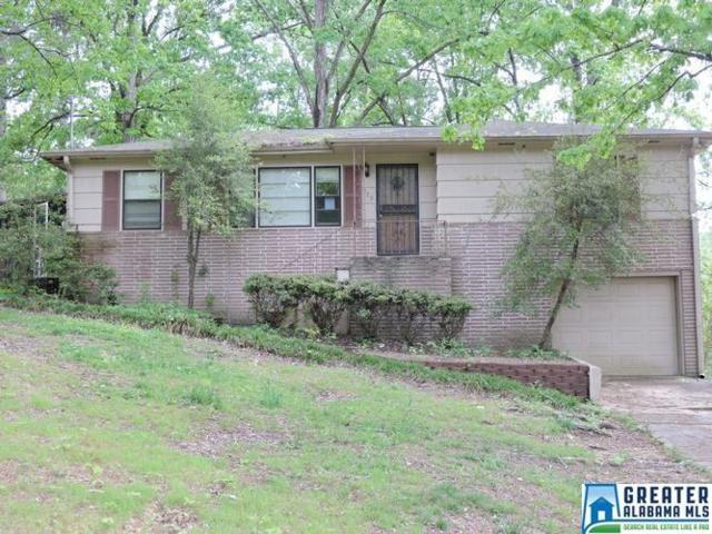 325 24TH AVE NE, Center Point, AL 35215 (MLS #849640) :: Bentley Drozdowicz Group