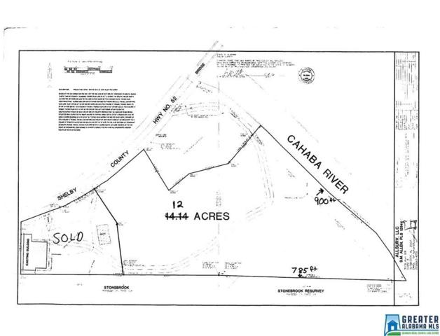 12 Acres Hwy 52 #1, Helena, AL 35080 (MLS #849818) :: Brik Realty