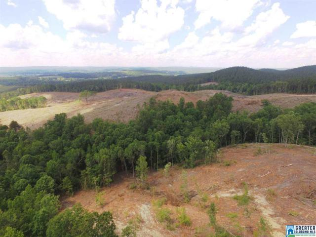 118 acres Alawashky Rd 118 Acres, Ashland, AL 36251 (MLS #850158) :: LIST Birmingham