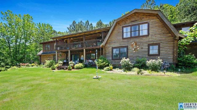 2098 Red Valley Rd, Remlap, AL 35133 (MLS #850310) :: Bentley Drozdowicz Group