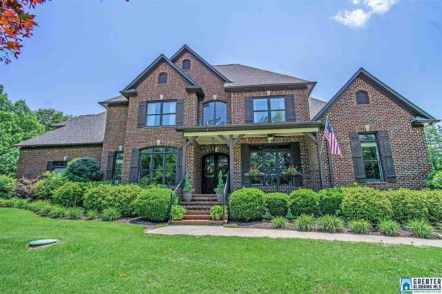 328 Ohara Dr, Chelsea, AL 35051 (MLS #850470) :: LocAL Realty