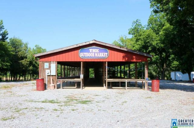 808 Logan Rd, Clanton, AL 35045 (MLS #850490) :: Gusty Gulas Group