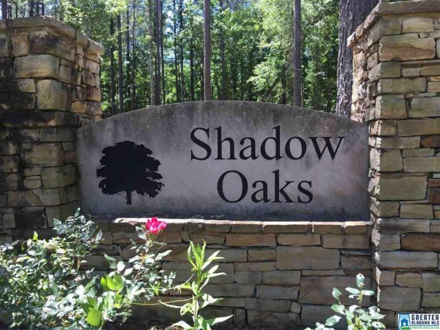 1016 Shadow Oaks Dr, Wilsonville, AL 35242 (MLS #850642) :: Brik Realty