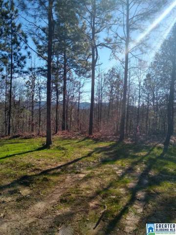 Wolf Pond Rd 36 Acres Wolf P, Talladega, AL 35160 (MLS #850690) :: Gusty Gulas Group