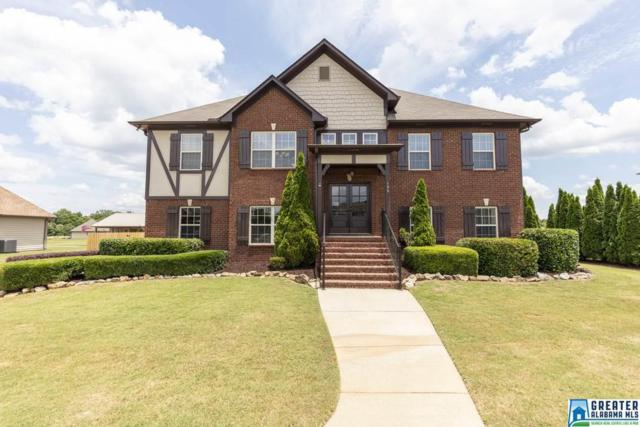 138 Farmingdale Dr, Harpersville, AL 35078 (MLS #851438) :: Gusty Gulas Group