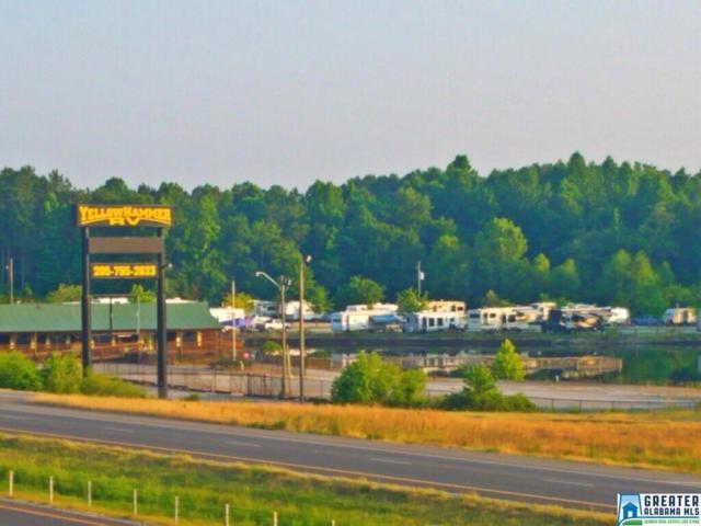 980 Dandy Lane, Clanton, AL 35045 (MLS #852354) :: Josh Vernon Group