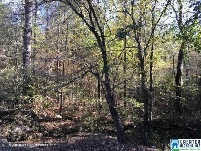 Co Rd 128 Na, Berry, AL 35546 (MLS #852900) :: Bentley Drozdowicz Group