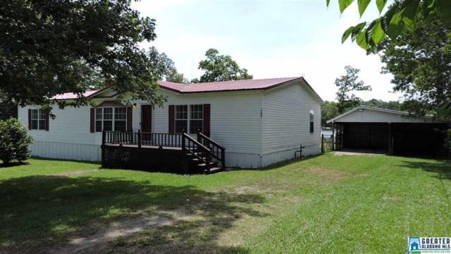 4450 Shore Dr, Ashville, AL 35953 (MLS #853304) :: Bentley Drozdowicz Group