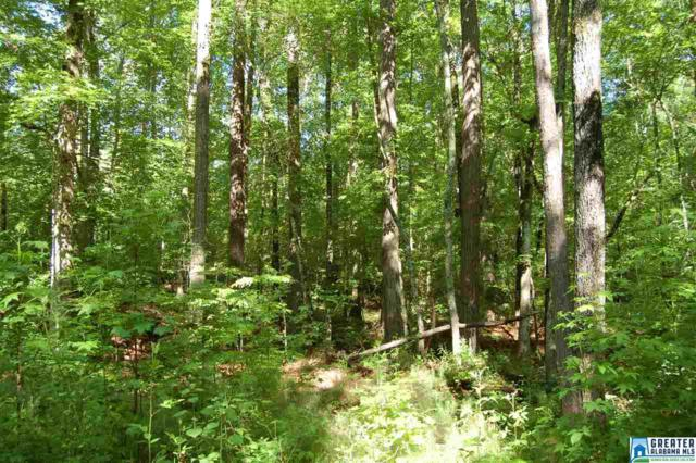 633 Acres Guthries Chapel Rd 633 Acres, Millerville, AL 36267 (MLS #853419) :: Howard Whatley
