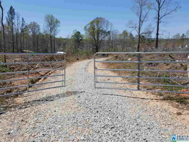 0 Hwy 63 None, Goodwater, AL 35072 (MLS #854197) :: Josh Vernon Group