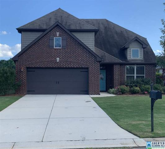 357 Blackberry Blvd, Springville, AL 35146 (MLS #854303) :: LIST Birmingham