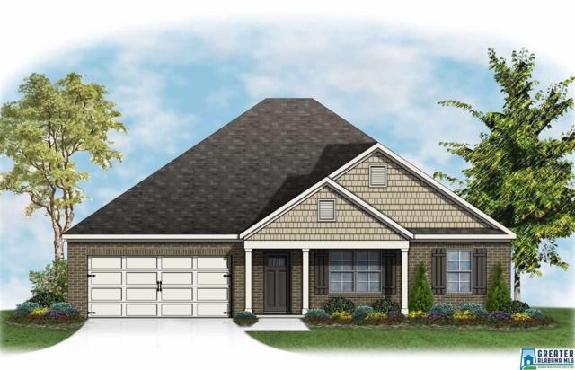 201 Rock Terrace Cir, Helena, AL 35080 (MLS #854473) :: Josh Vernon Group
