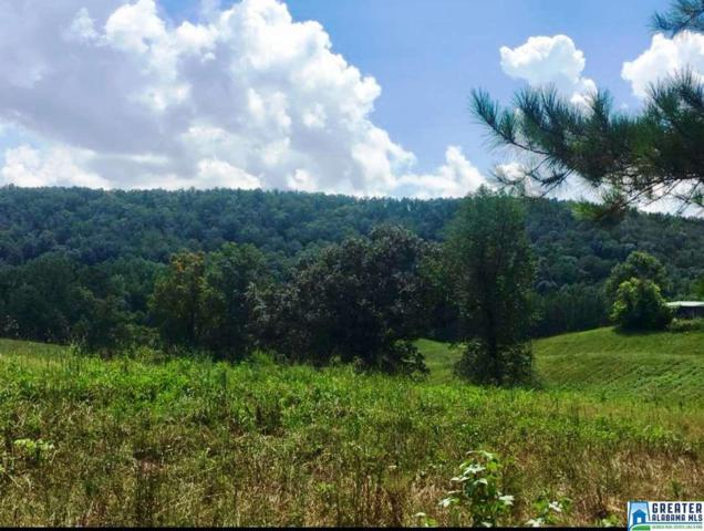 Watts Mill Rd 80 Acres, Ashland, AL 36251 (MLS #854779) :: Brik Realty