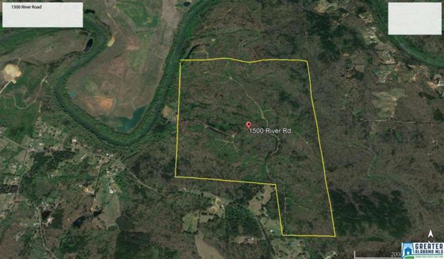 1500 River Rd 400 AC, Gardendale, AL 35071 (MLS #855204) :: Howard Whatley