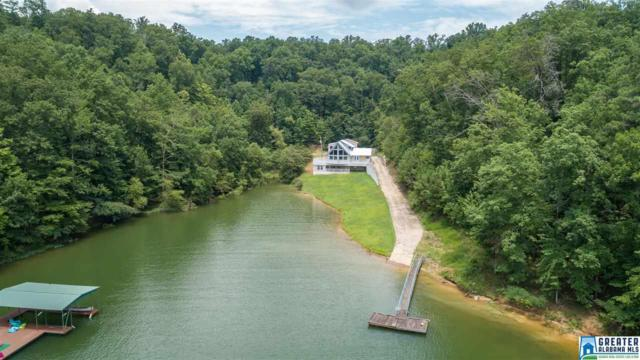 500 Co Rd 339, Crane Hill, AL 35053 (MLS #855248) :: Josh Vernon Group