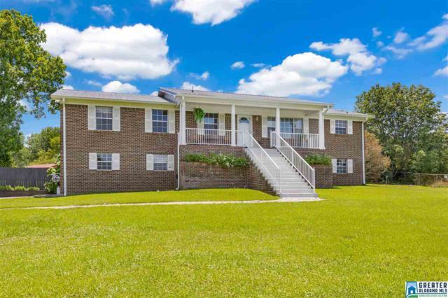 7677 Co Rd 27, Springville, AL 35146 (MLS #855486) :: Josh Vernon Group