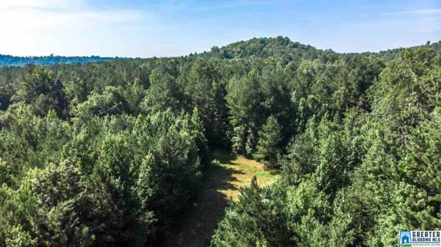 101 Co Rd 10 #101, Bremen, AL 35033 (MLS #856193) :: Josh Vernon Group