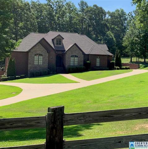 6150 Rock Mountain Lake Rd, Mccalla, AL 35111 (MLS #856235) :: Gusty Gulas Group