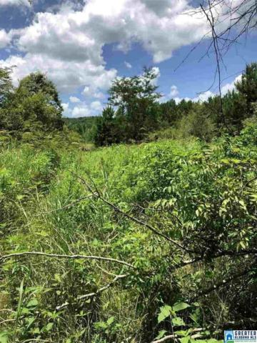 Hwy 77 38 Acres, Attalla, AL 35954 (MLS #856257) :: Josh Vernon Group