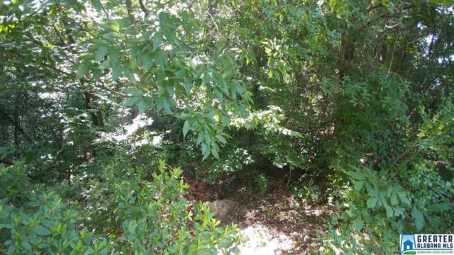 Buckhaven Dr One Acre Lot, Southside, AL 35907 (MLS #856336) :: LocAL Realty