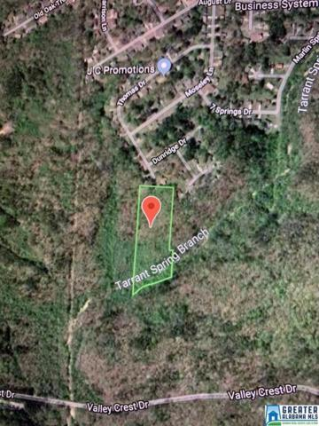 1260 Marlin Springs Rd Over 5 Acres Fo, Birmingham, AL 35215 (MLS #856738) :: LIST Birmingham