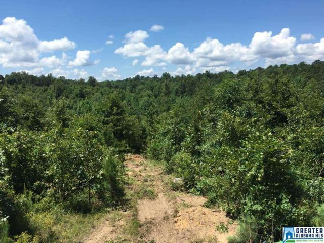 Co Rd 1049 #37100, Maplesville, AL 36750 (MLS #857122) :: LocAL Realty