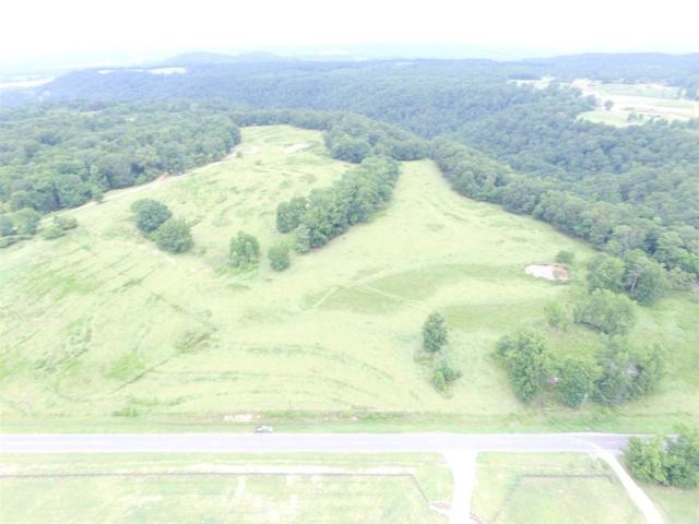 0 Hwy 57 44 Acres, Cleveland, AL 35049 (MLS #857906) :: Josh Vernon Group
