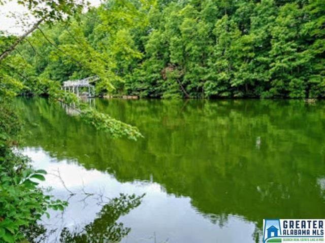 Lake Geneva Dr Lot 13, Wedowee, AL 36278 (MLS #857926) :: Bailey Real Estate Group