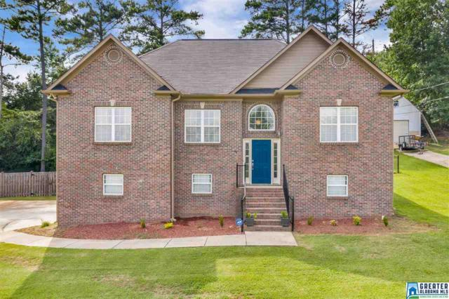49 Autumn Trc, Odenville, AL 35120 (MLS #858631) :: Gusty Gulas Group
