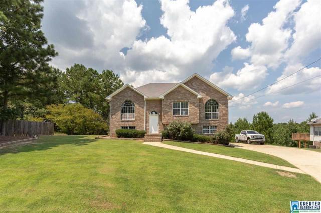 160 Pine Springs Rd, Odenville, AL 35120 (MLS #859242) :: Josh Vernon Group