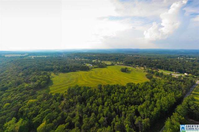 0 Co Rd 27 46 Acres, Springville, AL 35146 (MLS #862116) :: Josh Vernon Group