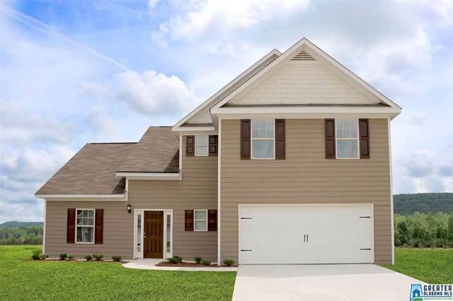 20 Homestead Ln, Springville, AL 35146 (MLS #862195) :: Josh Vernon Group