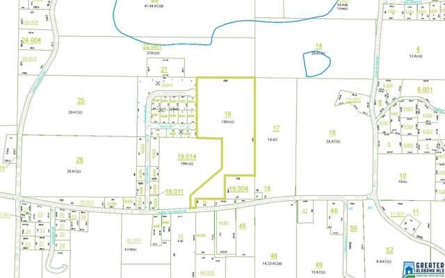 809 Anniston Beach Rd 15.18 Acres, Anniston, AL 36205 (MLS #862199) :: LocAL Realty