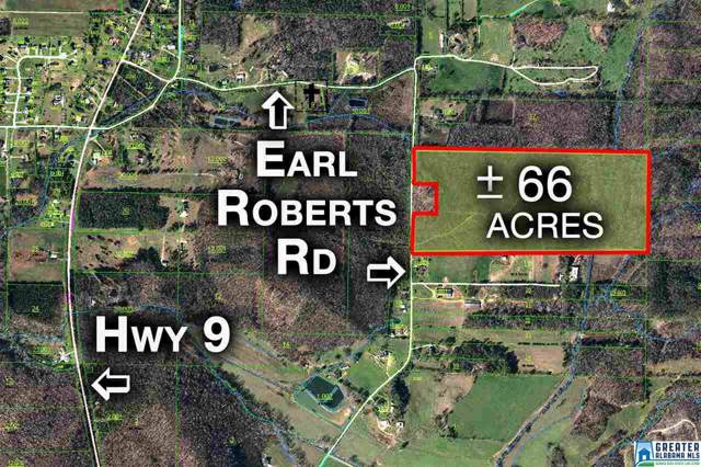 1240 Earl Roberts Rd #0, Anniston, AL 36207 (MLS #862427) :: LocAL Realty