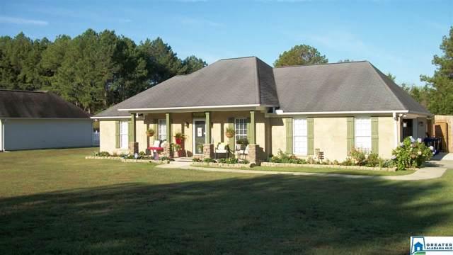 260 Seddon Farms Ln, Pell City, AL 35128 (MLS #863729) :: Josh Vernon Group